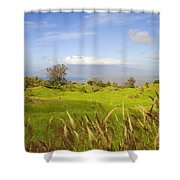 Ulupalakua Landscape Shower Curtain by Ron Dahlquist - Printscapes