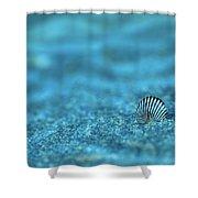 Underwater Seashell - Jersey Shore Shower Curtain by Angie Tirado