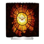 Vatican Window Shower Curtain by Carol Groenen
