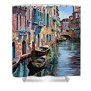Venezia In Rosa Shower Curtain by Guido Borelli