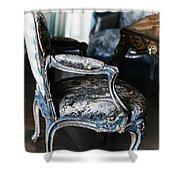 Very Elegant - Very Marie Antoinette Shower Curtain by Georgia Fowler
