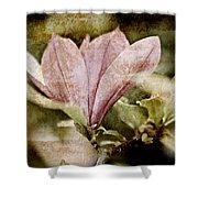 Vintage Magnolia Shower Curtain by Frank Tschakert