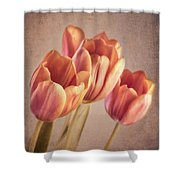 Vintage Tulips Shower Curtain by Wim Lanclus