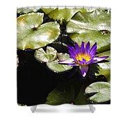Vivid Purple Water Lilly Shower Curtain by Teresa Mucha