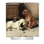 Waiting For Master Shower Curtain by William Henry Hamilton Trood