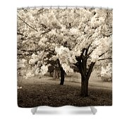 Waiting For Sunday - Holmdel Park Shower Curtain by Angie Tirado