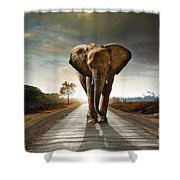 Walking Elephant Shower Curtain by Carlos Caetano