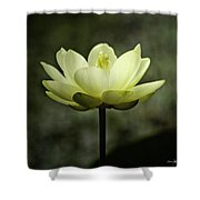 Water Colors Shower Curtain by Scott Pellegrin