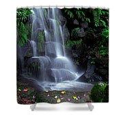 Waterfall Shower Curtain by Carlos Caetano