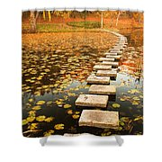 Way In The Lake Shower Curtain by Evgeni Dinev