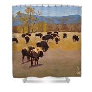 Where The Buffalo Roam Shower Curtain by Tate Hamilton