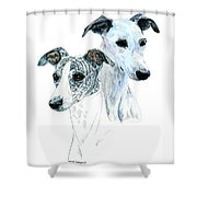 Whippet Pair Shower Curtain by Kathleen Sepulveda