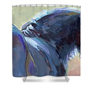 Whiskery Clyde Shower Curtain by Kimberly Santini