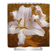 White Lilies. Time To Be Romantic Shower Curtain by Jenny Rainbow