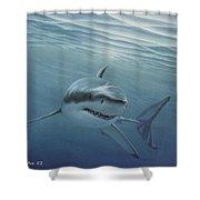White Shark Shower Curtain by Angel Ortiz