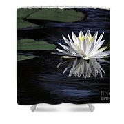White Water Lily Shower Curtain by Sabrina L Ryan