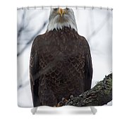 Why So Serious Shower Curtain by Lloyd Alexander