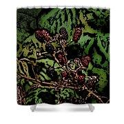 Wild Berries Shower Curtain by David Lane