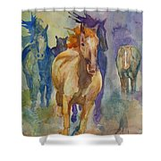 Wild Horses Shower Curtain by Gretchen Bjornson