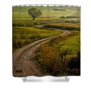 Willow Shower Curtain by Davorin Mance