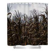 Wind Blown Shower Curtain by Linda Knorr Shafer