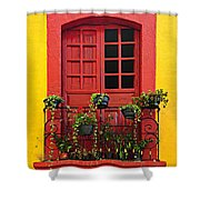 Window On Mexican House Shower Curtain by Elena Elisseeva