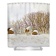 Winter Beauty Shower Curtain by Deborah Benoit