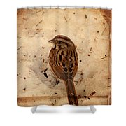 Winter Feast I - Textured Shower Curtain by Angie Tirado
