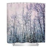 Winter Forest Shower Curtain by Priska Wettstein
