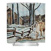 Winter Grazing  Shower Curtain by Charlotte Blanchard