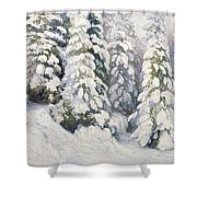 Winter Tale Shower Curtain by Aleksandr Alekseevich Borisov