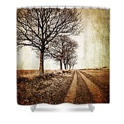 Winter Track With Trees Shower Curtain by Meirion Matthias
