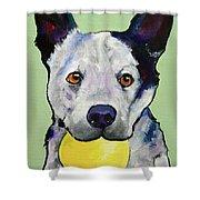 Yellow Ball Shower Curtain by Pat Saunders-White