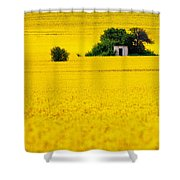 Yellow Shower Curtain by Evgeni Dinev