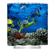 Yellow Scuba Diver Shower Curtain by Ed Robinson - Printscapes