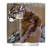You Talking To Me Shower Curtain by J W Baker