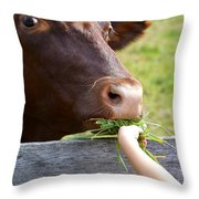 Childs Helping Hand Throw Pillow by Julie Palencia