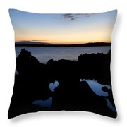Throw Pillow by Jenna Szerlag