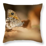 Lattice Brown Kirinia Roxelana Throw Pillow by Alon Meir