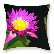 00189 Throw Pillow by Marty Koch