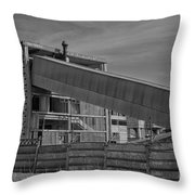 Abandoned Factory At Vadu Throw Pillow by Gabriela Insuratelu