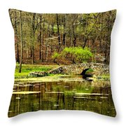 Arkansas Tranquility Throw Pillow by Benjamin Yeager