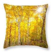 Aspen Morning Throw Pillow by Darren  White
