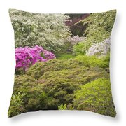 Asticou Azelea Garden - Northeast Harbor - Mount Desert Island - Maine Throw Pillow by Keith Webber Jr