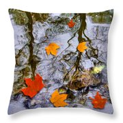 Autumn Throw Pillow by Daniel Janda