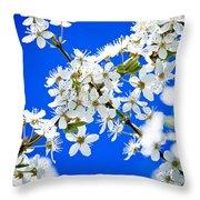 Cherry Blossom With Blue Sky Throw Pillow by Raimond Klavins