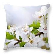 Cherry Blossoms Throw Pillow by Elena Elisseeva