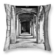 Chicago Fourth Presbyterian Church Throw Pillow by Christine Till