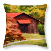 Country Charm Throw Pillow by Darren Fisher