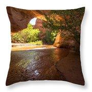 Coyote Natural Bridge - Coyote Gulch - Utah Throw Pillow by Gary Whitton